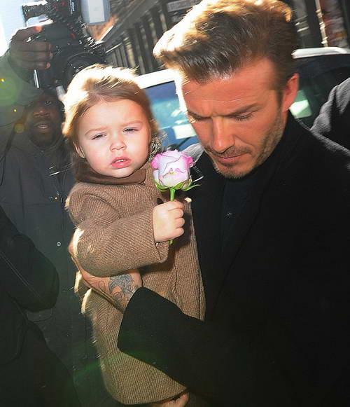 Дэвид с дочкой идут на ланч в Бальтазар